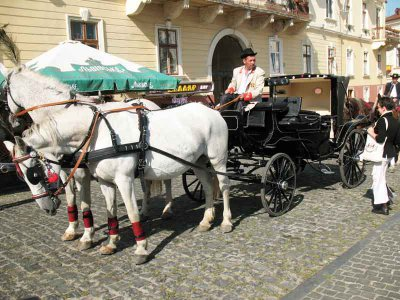 In the carriage - the center of Chernivtsi (PHOTOS )