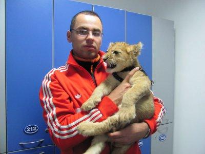 В черновицкой семье живет львенок