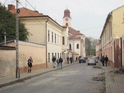 Ученик Шопена основал в Черновцах научную библиотеку