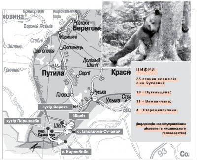 Буковинские медведи убегают в Евросоюз