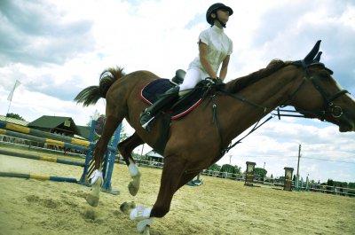 В Реваковцы состоялись соревнования по конкуру «Буковина Horse Tour»