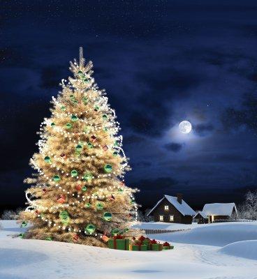 На новорічні свята тривалих вихідних не буде