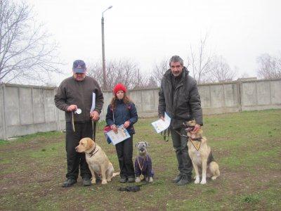 В областных соревнованиях собак победила миттельшнауцер Бася