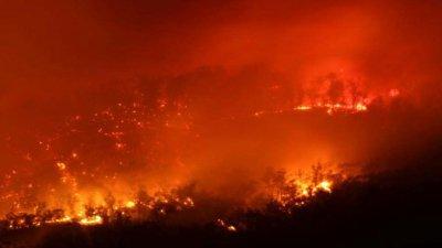 Остров Тасмания в огне: зарегистрировано 40 пожаров, почти 100 жителей исчезли везвисты
