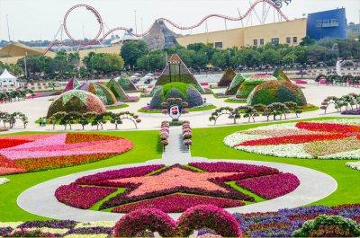 В Дубае Викрил крупнейший в мире парк цветов