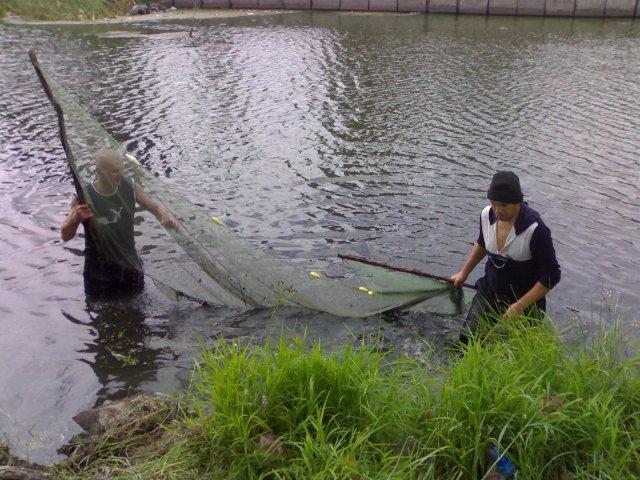 рыбалка в чернівцях