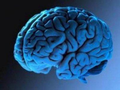 Австралийские ученые создадут бионический мозг