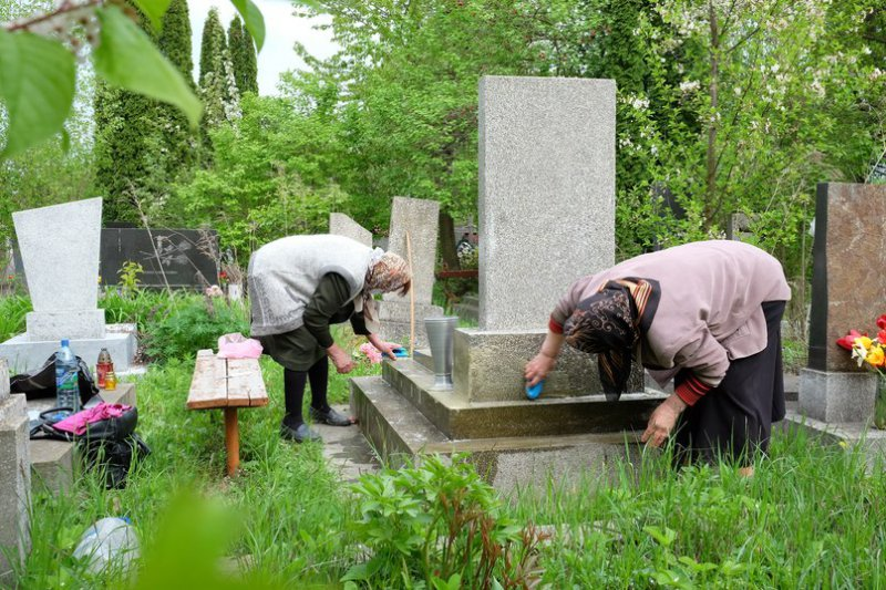 Растения которые сажают на кладбище 270