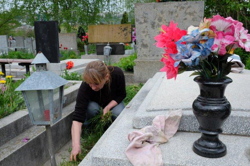 Растения которые сажают на кладбище 122