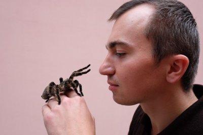 Выпускник ЧНУ разводит дома пауков-птицеедов (ФОТО)
