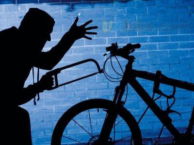 Bukovina again steal bikes