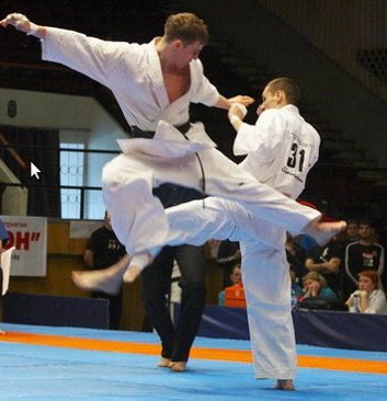 Bukovina karate won eight medals at the championship of Ukraine