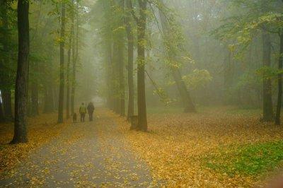 Chernivtsi is now warm in the morning fog