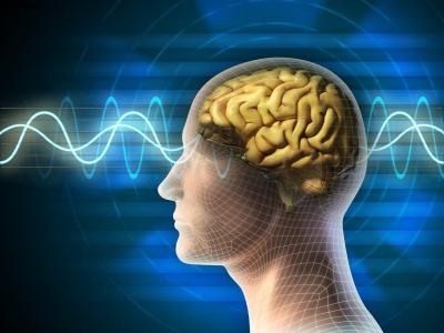Чоловічий мозок починає в'янути після 40 років