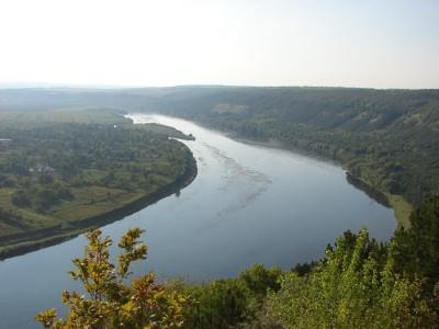Дністровські парки вимагають заборонити промисловий вилов риби у річці