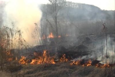Буковинець погиб, сжигая на своем участке траву