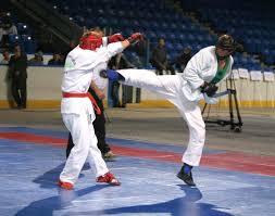Буковинці здобули медалі на чемпіонаті України з рукопашного бою
