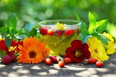 Рослини лікують хвороби нирок