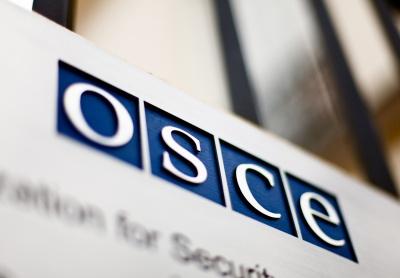 ОБСЄ фіксує використання на Донбасі озброєння калібром понад 100 міліметрів