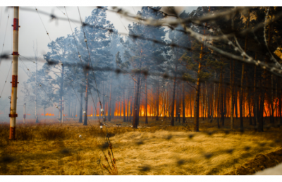 Масштабні пожежі охопили Забайкалля
