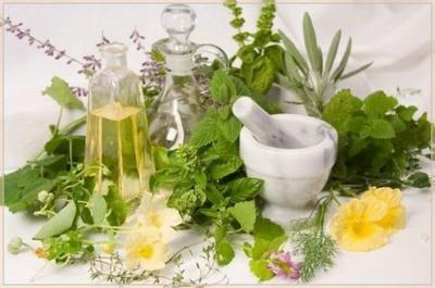 Жовчний міхур та печінку можна лікувати травами