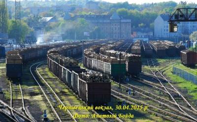 Експорт лісу за кордон активізувався - ЗМІ (ВІДЕО)