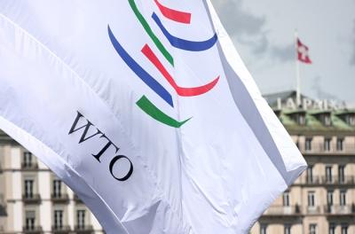 Росія скаржиться на Україну та ЄС до СОТ