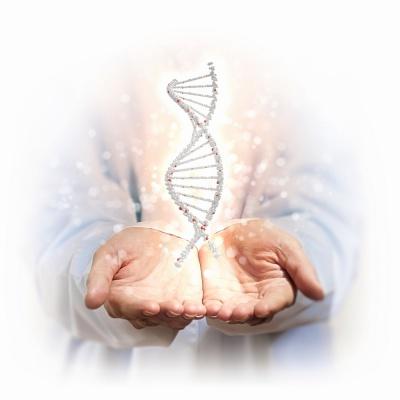Що впливає на ДНК людини
