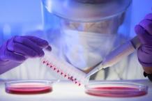 Смертельний коронавірус МЕRS уже в Європі