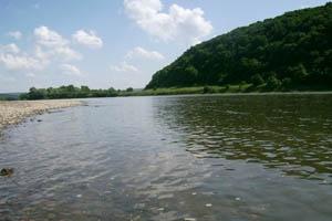 На Буковині потонув чоловік, який вирішив скупатися після відпочинку на озері