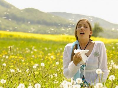 Від пуху тополь врятує дієта