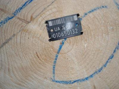 У Чернівцях відбудеться аукціон з продажу деревини
