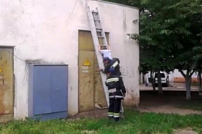 У Чернівцях хлопчика з трансформаторної підстанції зняли рятувальники (ВІДЕО)