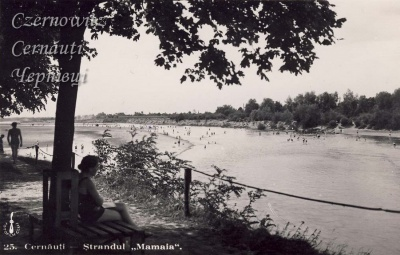 Як виглядала річка Прут у Чернівцях на початку ХХ століття (ФОТО)