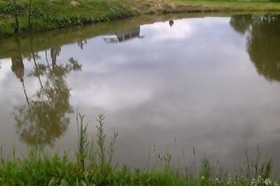 На Буковині під час відпочинку потонув чоловік