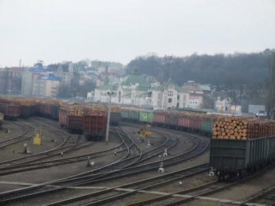 Порошенко підписав закон про мораторій на експорт необробленої деревини