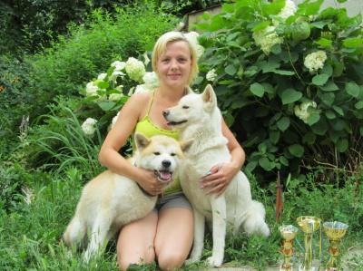 У Чернівцях з'явився розплідник собак рідкісної японської породи (ФОТО)