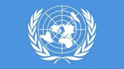 В Совбезе ООН начали обсуждение проекта резолюции по трибуналу по сбитому Боингу