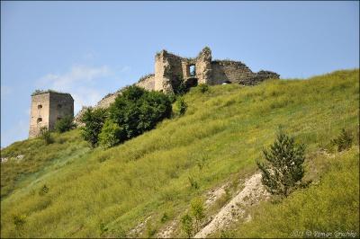 Бізнесмен з Чернівців хоче придбати замок на Тернопільщині