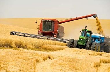 Міністерство аграрної політики прогнозує збільшення експорту зерна до 36 мільйонів тонн