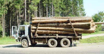 ДАІ затримало на Путильщині вантажівку з лісом без документів