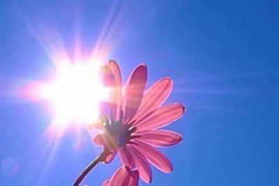 У День Незалежності на Буковині - до 28 градусів тепла