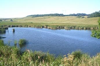 На Буковине в пруду утонул мужчина