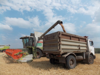 На Буковині активно збирають урожай зернових (ФОТО)