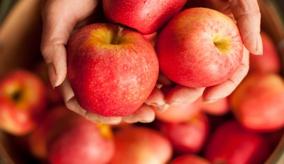 Як вивести хімію та пестициди з овочів і фруктів