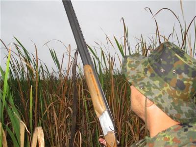 На Буковині розпочинається полювання на пернату дичину