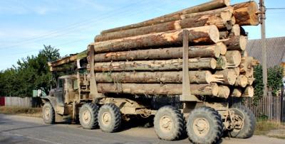 На Буковині знову затримали вантажівку з необлікованим лісом