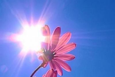 Кінець літа на Буковині буде сухим і спекотним