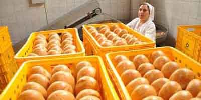 До кінця року хліб, м'ясо та молоко подорожчають на 5%