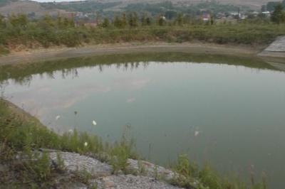 На Буковині у ставку втопився ще один чоловік